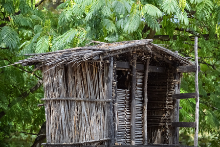 hideout: Closeup of a birdhouse on a tree made of wood and straws