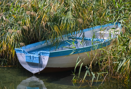 Closeup of a small fishing boat moored in the dense reed