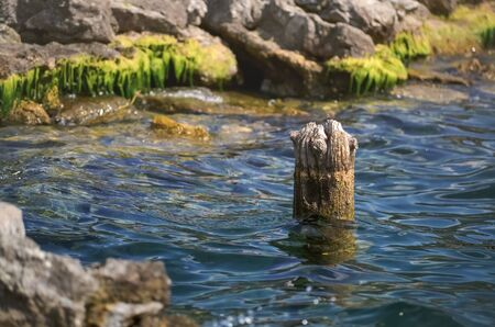 Wooden bollard in the water and green moss on the rocks Stock Photo