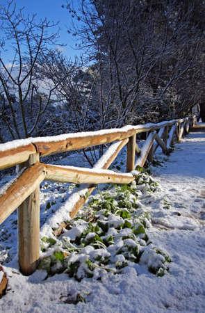 Parque natural nevado