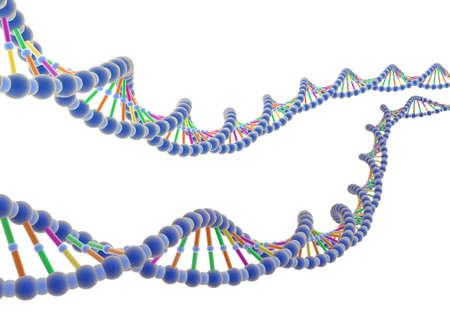 adenine: ADN 2 Stock Photo