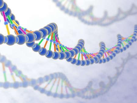 ADN 3