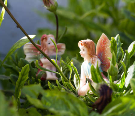 generic dolls shaped fairy on vegetation