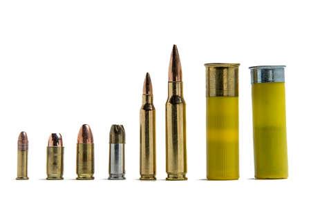 Several different shells lined up for size comparison: .22lr, .380, 9mm fmj, 9mm jhp, .556, .308, 20 gauge shotshell. Reklamní fotografie