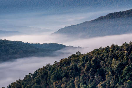 Overlooking the Ozark Mountains on a foggy morning. Stock fotó