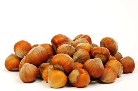 handful of fresh hazelnuts on a white background closeup photo