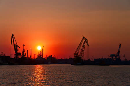 Evening sea port, cargo cranes against the setting sun. Odessa. Ukraine. photo