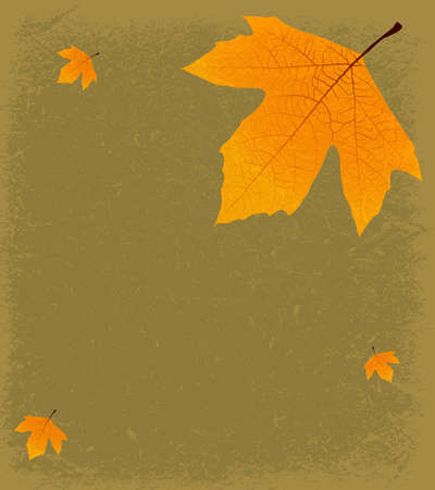 sycamore leaf: Grunge Autumnal Background - Sycamore leaf on a textured backdrop of old paper, with space for text or images Illustration