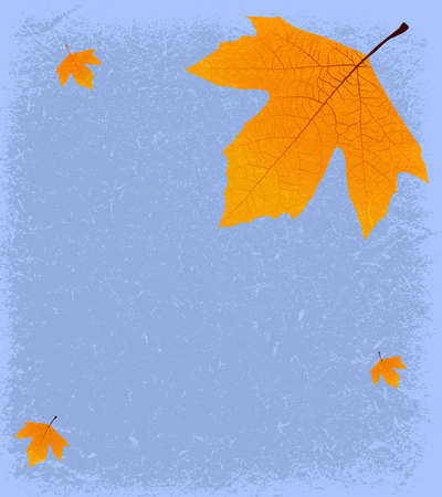 Grunge Autumnal Background - Sycamore leaf on a textured backdrop of old paper, with space for text or images. Vector