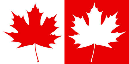 Double maple leaf silhouette Stock Vector - 15365153