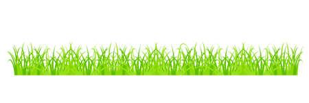 grass blades: Design element - cartoon green grass. vector.