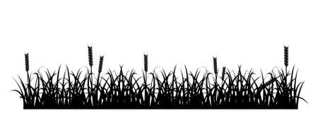 Design element - silhouette of grass and spikelets. vector Stock Vector - 16762274