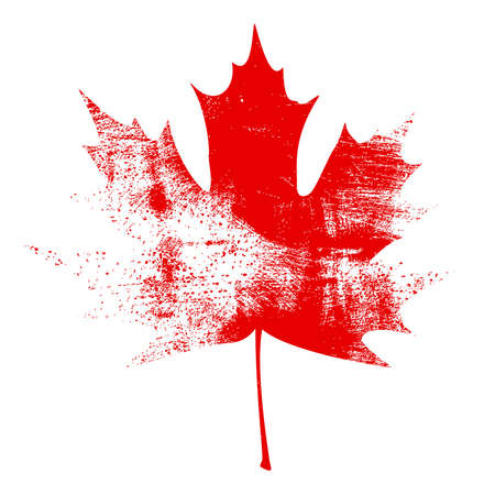 canada day: Red Grunge Maple Leaf vector illustration