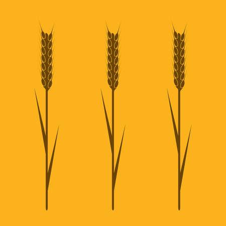 wheaten: Design element - wheaten ear. EPS10 vector image.