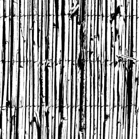 Bamboo Wattle Fence Texture.  Vector