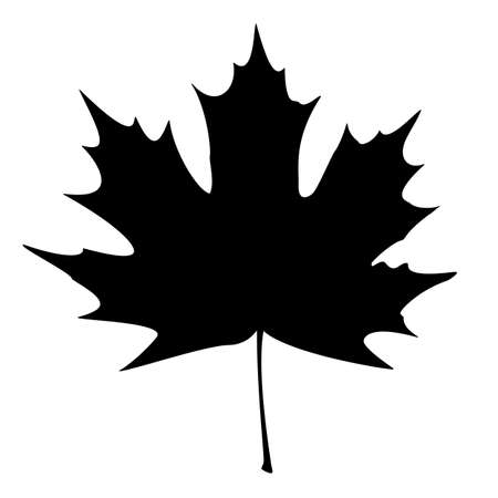 autumn leaf frame: Maple Leaf Silhouette for your design.