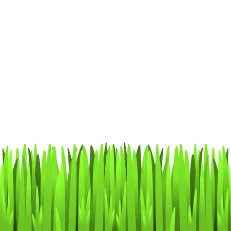 Green grass - seamless element for your design. EPS10 vector. Vector