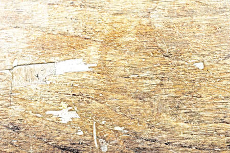 Bleached Wood Texturee - Old wooden surface with traces of damage. photo