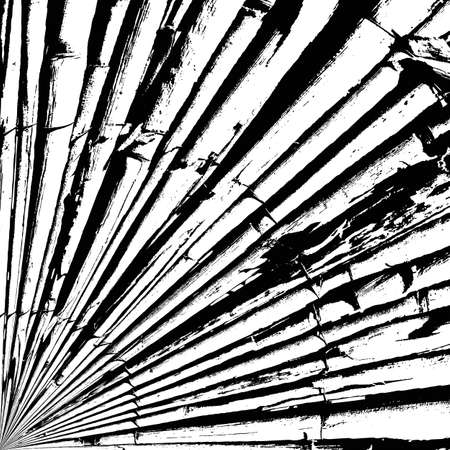 wattle: Bamboo Wattle Fence Texture. EPS10 vector.