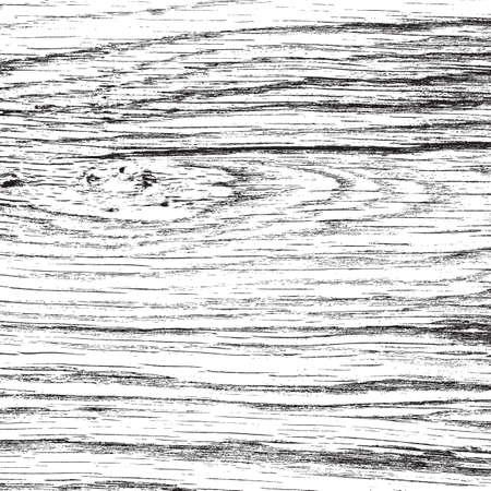 Light Oak Texture for your design. EPS10 vector. Vector