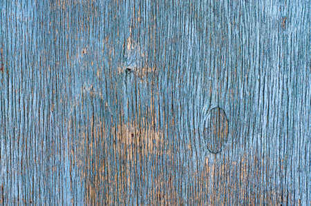 Blue Distressed Wooden Vackground - Blue Painted Wood photo