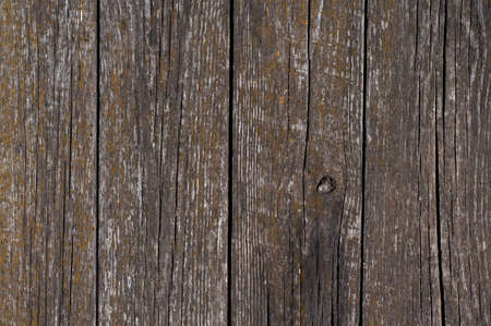 Distress Wooden Background For your design. photo