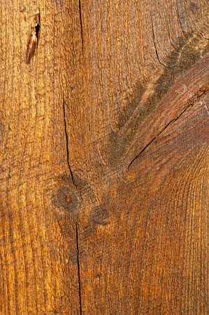 oiled: Oiled wooden plank texture for your design.