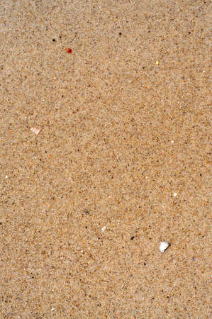 vertical orientation: Wet Sand Background for your design. Vertical Orientation.