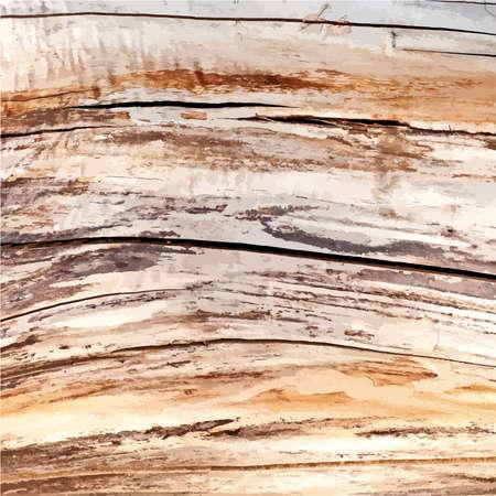dry: Dry Illustration