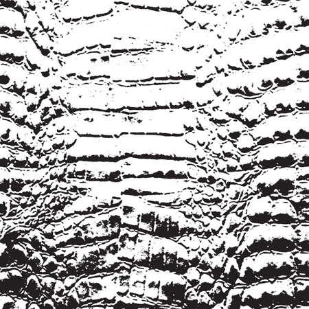 snakeskin: Crocodile Skin Illustration