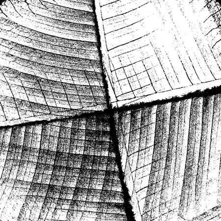 fondo cuadritos: Cuadrados de fondo y Rejillas