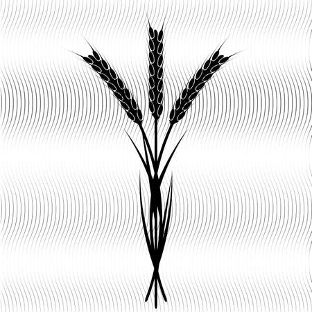 wheaten: Design element - wheaten ear.