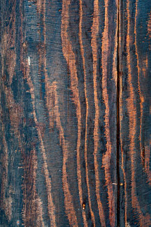 oiled: Oiled Distress Wood Texture For Your Design. Stock Photo