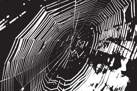 nakładki: Spider Web Nakładka tekstury