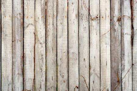 distressed background: Distress Wooden Planks Background For Your Design.