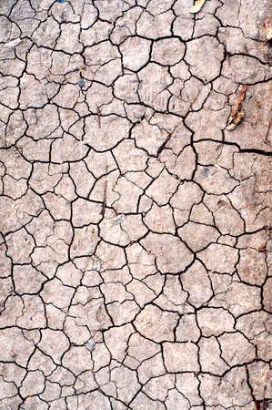 cracked earth: Dry Cracked Earth Texture For Your Design, Stock Photo