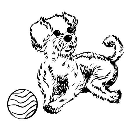 playing dog vector illustration design hand drawing Vector Illustratie