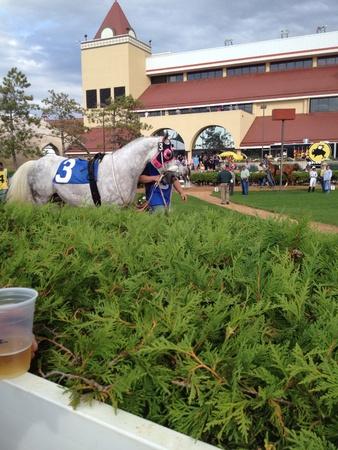 Wit paard cirkelen jockey stal gaan om te racen gaan Stockfoto