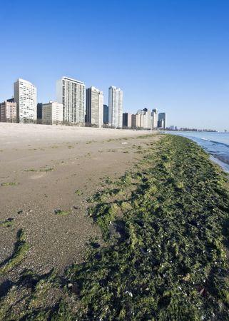 Gold Coast in Chicago, IL. photo