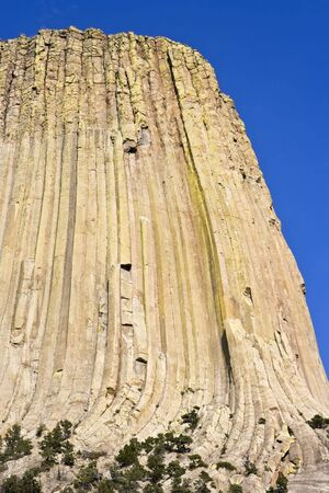 Textures on Devil's Tower National Monument. Stock Photo - 4073180
