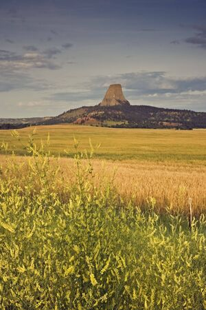 Devil's Tower National Monument in Wyoming. Stock Photo - 4073285