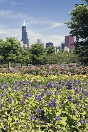 aon: Colorful Park in Chicago, IL
