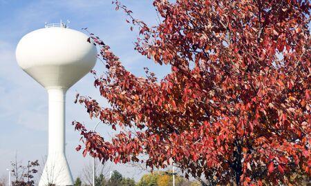 wody wieży: Drzewo i Biała Wieża ciśnień