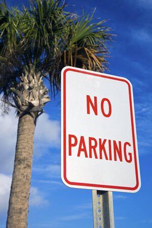 Geen parkeer gelegenheid onder de palm boom - gezien in Florida Stockfoto