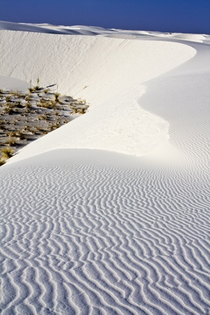 Early morning in White Dunes National Monument - New Mexico. photo