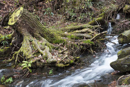 appalachian trail sign: Great Smoky Mountains National Park fall scenery Stock Photo