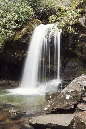 great smoky national park: Grotto Falls in Great Smoky Mountains National Park