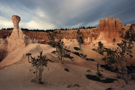 Rock formations in Bryce National Park, Utah photo