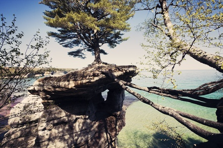 Tree on the rock Pictured Rocks National Lakeshore. Michigan, USA. Stock Photo - 13797561