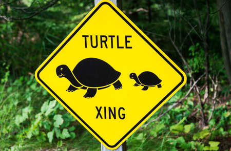 xing: Turtle xing - sign seen by the road Stock Photo